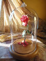 beauty and the beast light up rose beauty and the beast enchanted rose by justhands deviantart com on