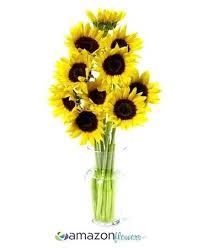 bulk flowers online buy fresh flowers wholesale fijc info