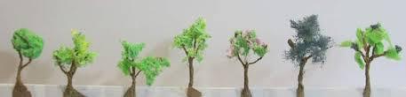 seven trees jpg