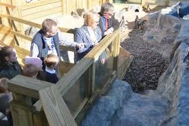 mayor opens hunstanton s new penguin enclosure lynn news