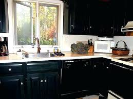 diy painting kitchen cabinets ideas diy painted black kitchen cabinets medium painting kitchen cabinets