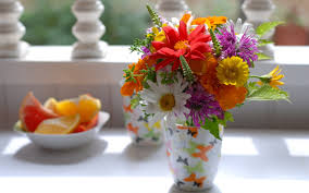 beautiful flowers pot for sweet home hd wallpapers rocks