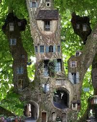 Tree House Home Best 25 Fairy Tree Ideas On Pinterest Gnome Tree Stump House