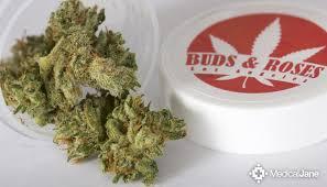 strawberry choke marijuana strain review