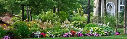 about foster creative designs your plymouth landscaping designer