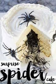 best 25 spider cake ideas on pinterest halloween birthday cakes