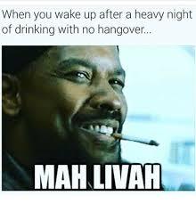 Funny Hangover Memes - 25 best memes about no hangover no hangover memes