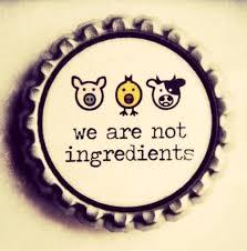 Vegan and Vegetarian Quote     Like Success