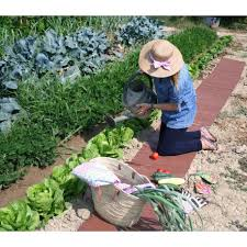 roll out garden gardens design ideas