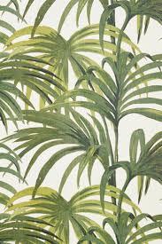 Palm Tree Wallpaper 83 Best Tropical Palm Decor Images On Pinterest Palms Tropical