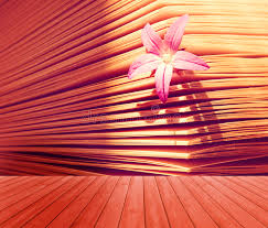 Flowers In A Book - empty wooden deck table with beautiful little flower in a book