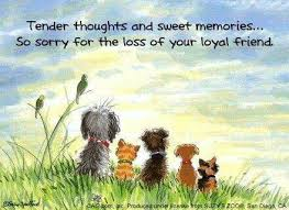 loss of dog 28 best dogs prayers for loss images on rainbow