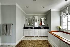 bathroom design sherwin williams sea salt traditional bathroom