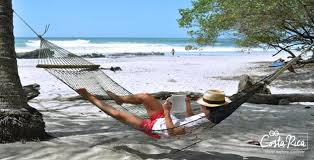 land forests and beaches tiquicia costa rica