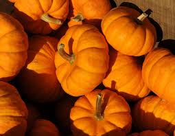 pumpkins for sale the day forget carving o lanterns cook that pumpkin