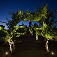 Landscape Up Lights Stylist Design Ideas Landscape Uplights Lighting Wow Effect Wolf