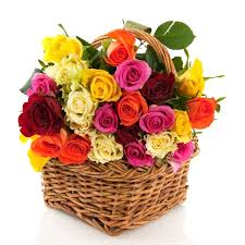 Different Color Roses Multi Color Roses Basket