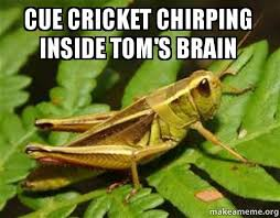 Crickets Chirping Meme - cue cricket chirping inside tom s brain make a meme