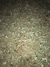 Stephens Roofing San Antonio Tx by Big Hail On North Side Of San Antonio Texasbowhunter Com