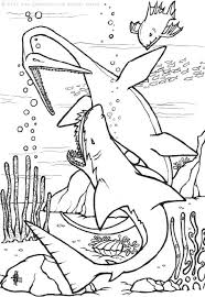 sharks coloring pages print coloring
