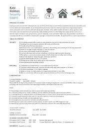 examples of resume for job application resume for job application
