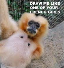 Sexy Monkey Meme - sexy draw me like one of your french girls know your meme