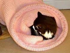knitting pattern cat cave i have to knit a cat cocoon free pattern from ravelry felt ideas