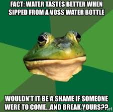Fact Frog Meme - fact water tastes better when sipped from a voss water bottle