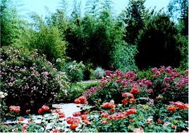 Atlanta Botanical Gardens Membership Atlanta Botanical Garden Wedding Svapop Wedding The Of