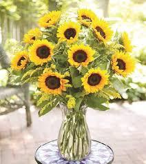 sunflower arrangements sunflower arrangements sunflower arrangement wedding ideas