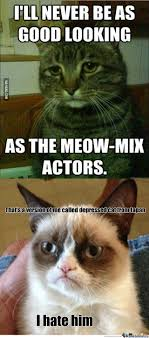 Depressed Cat Meme - japan s depressed cat by dadomonator meme center