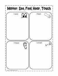 matter and the senses worksheets