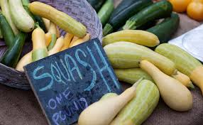 10 summer squash varieties some you know some you don u0027t modern