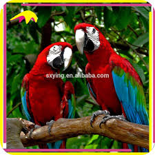 animatronic parrot animatronic parrot suppliers and manufacturers