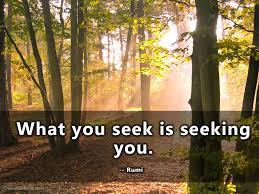 Seeking Live What You Seek Is Seeking You Rumi Dianagarland