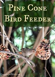 pine cone bird feeder u2013 juggling with kids