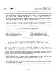 it resume summary senior it executive resume senior cover letter gallery of executive resume examples