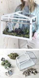 the 25 best ikea terrarium ideas on pinterest