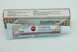 Obat Salep Gentamicin gentiderm 10 gr