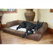 hidden valley extra large baxter orthopedic dog couch foam bed
