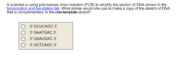 a scientist is using polymerase chain reaction pc chegg com