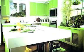 lime green kitchen ideas lime green kitchen accessories lime green kitchen utensils lime
