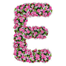 e flowers l flower alphabet isolated on white with clipping path stock