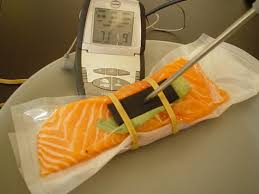 thermom re de cuisine salmon sous vide 1st trial with turbigomme and a thermometer probe