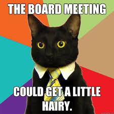 Board Meeting Meme - the board meeting could get a little hairy cat meme cat planet