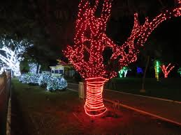 Turtle Back Zoo Lights by The Best Destinations In Trinidad To Get Into The Spirit Of