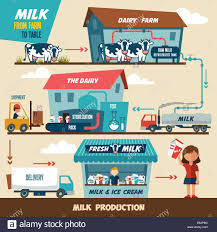 from farm to table stages of production and processing of milk from a dairy farm to