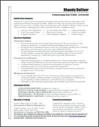 cio resume sample cio resume u2013 topshoppingnetwork com