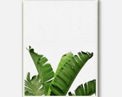Tropical Decor Banana Leaf Print Tropical Decor Plant Botanical Tropical
