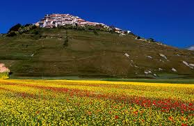 Norcia Italy Map Agriturismo Casale Nel Parco Farmhouse Holidays In Italy